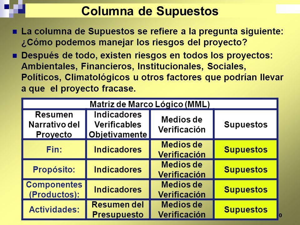 Columna de Supuestos La columna de Supuestos se refiere a la pregunta siguiente: ¿Cómo podemos manejar los riesgos del proyecto