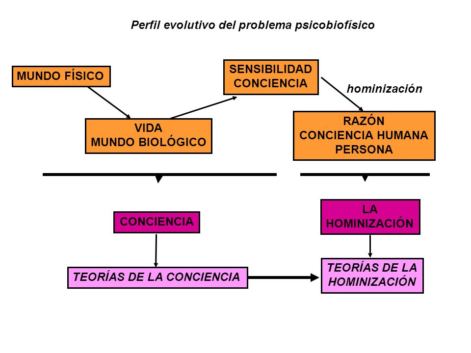 Perfil evolutivo del problema psicobiofísico