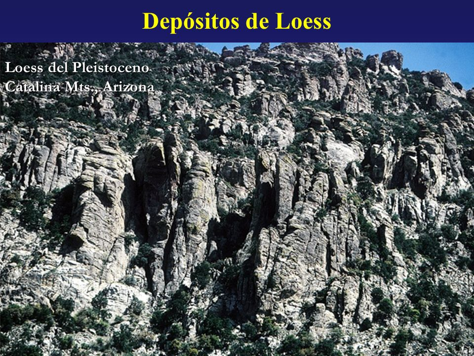 Depósitos de Loess Loess del Pleistoceno Catalina Mts., Arizona