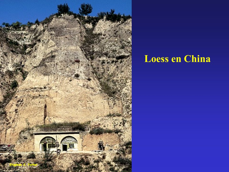 Loess en China Stephen C. Porter