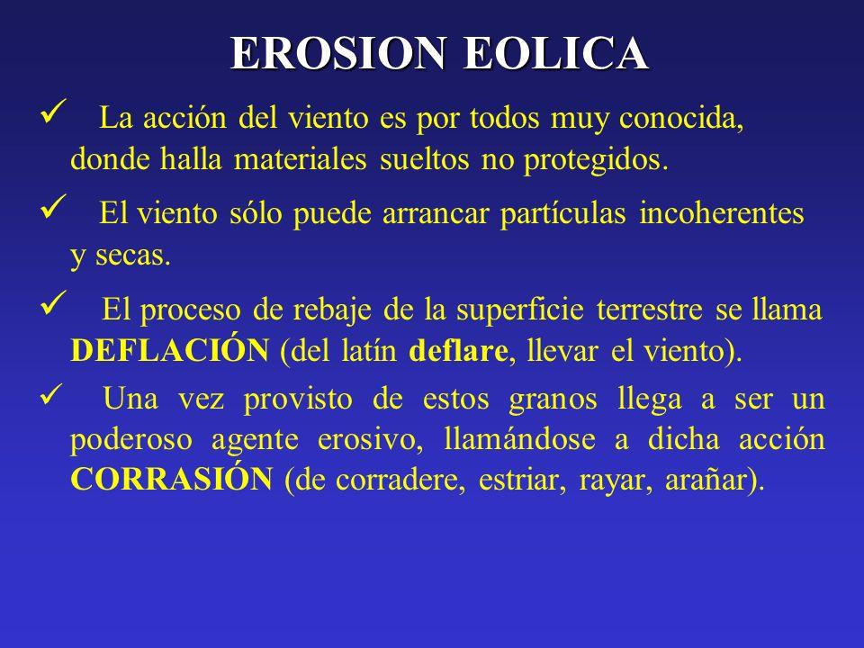 EROSION EOLICALa acción del viento es por todos muy conocida, donde halla materiales sueltos no protegidos.