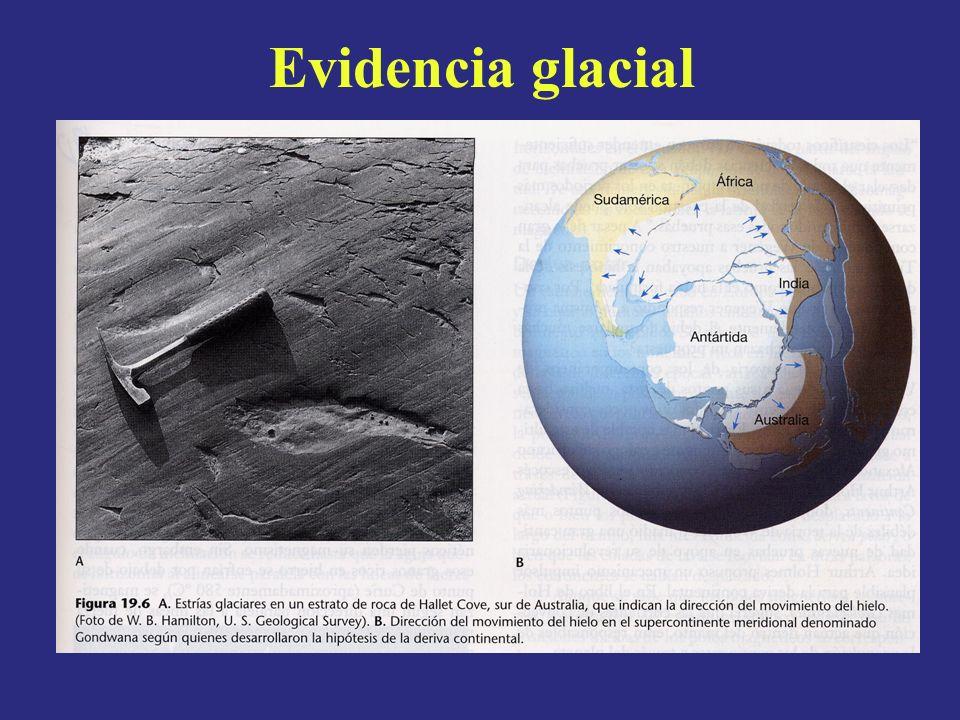 Evidencia glacial