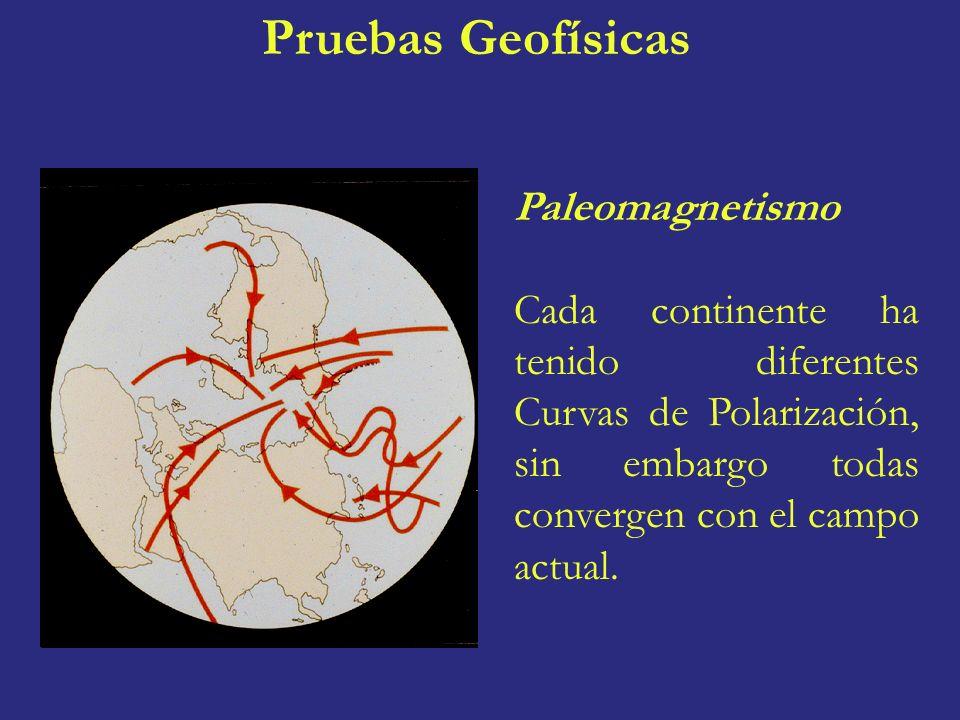 Pruebas Geofísicas Paleomagnetismo
