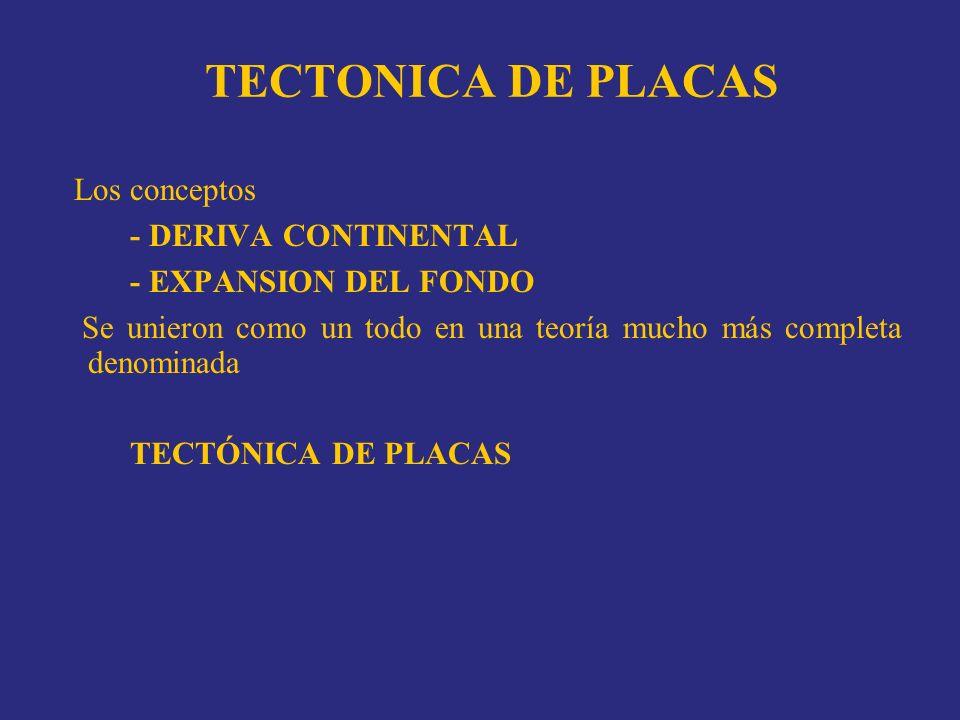 TECTONICA DE PLACAS Los conceptos - DERIVA CONTINENTAL