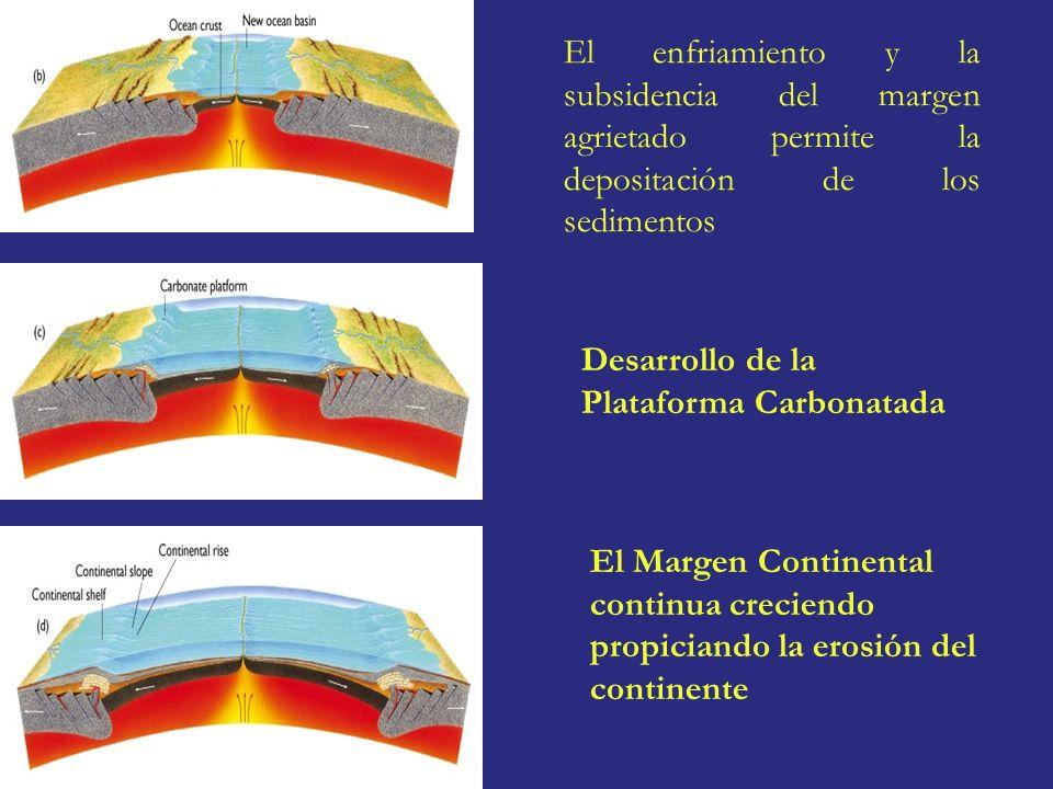 El enfriamiento y la subsidencia del margen agrietado permite la depositación de los sedimentos