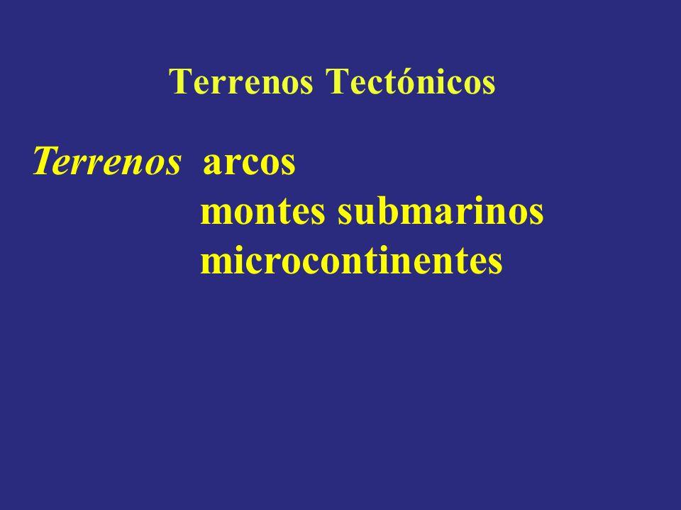 montes submarinos microcontinentes