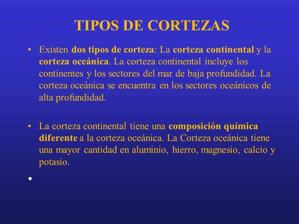TIPOS DE CORTEZAS