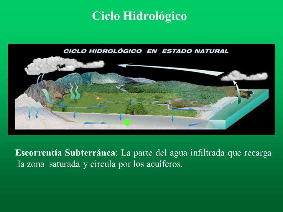 Ciclo Hidrológico Escorrentía Subterránea: La parte del agua infiltrada que recarga la zona saturada y circula por los acuíferos.