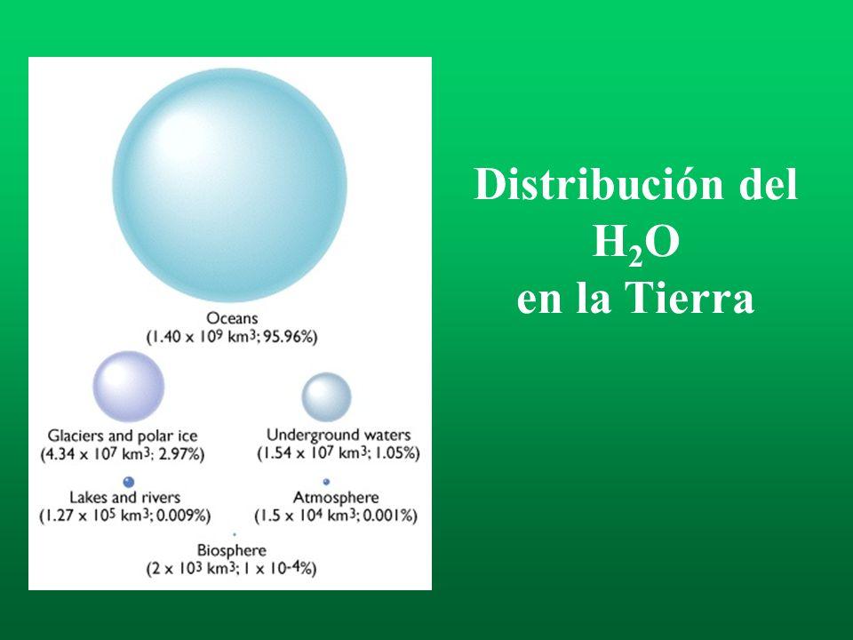 Distribución del H2O en la Tierra