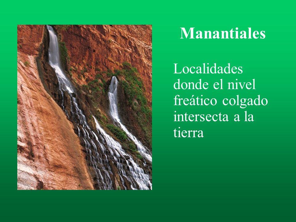 Manantiales Localidades donde el nivel freático colgado intersecta a la tierra