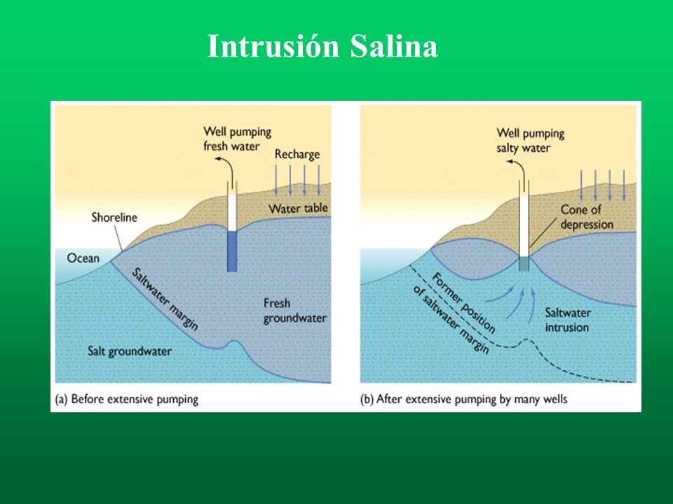 Intrusión Salina