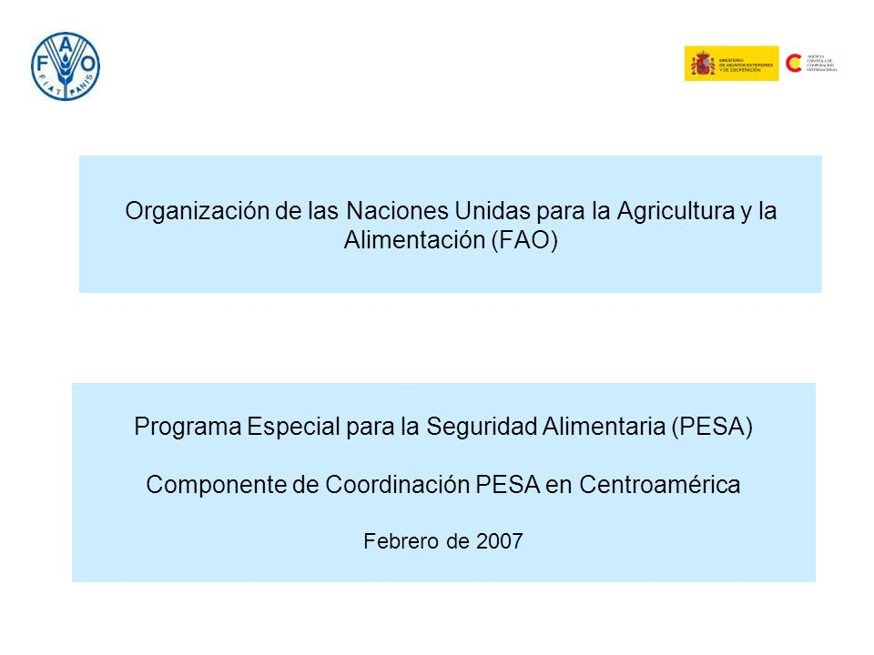 Organización de las Naciones Unidas para la Agricultura y la Alimentación (FAO)