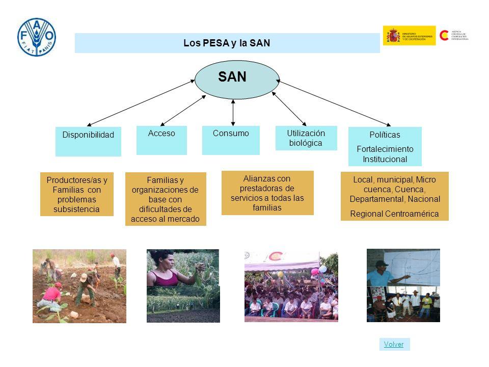 SAN Los PESA y la SAN Disponibilidad Acceso Consumo