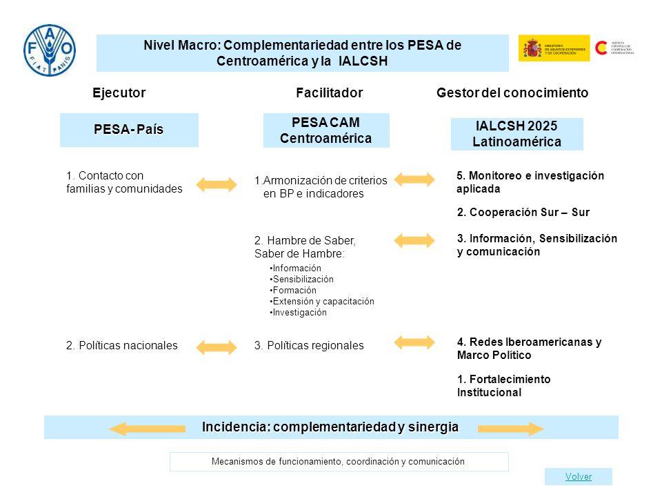 PESA CAM Centroamérica Incidencia: complementariedad y sinergia