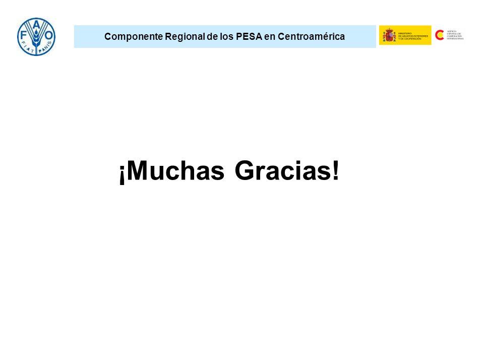 Componente Regional de los PESA en Centroamérica