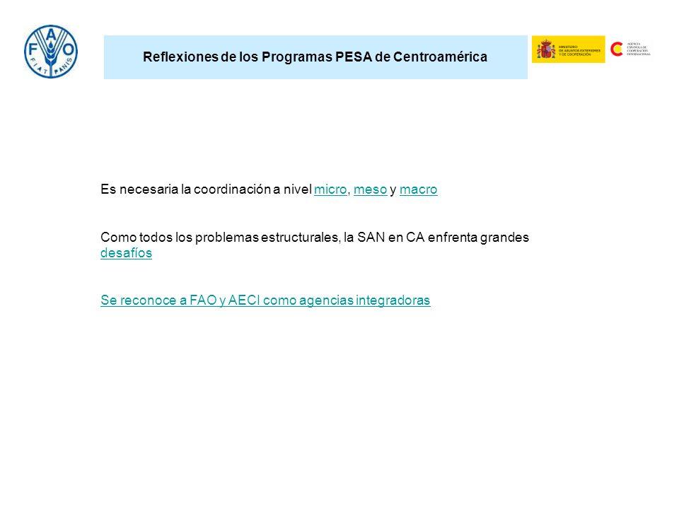 Reflexiones de los Programas PESA de Centroamérica