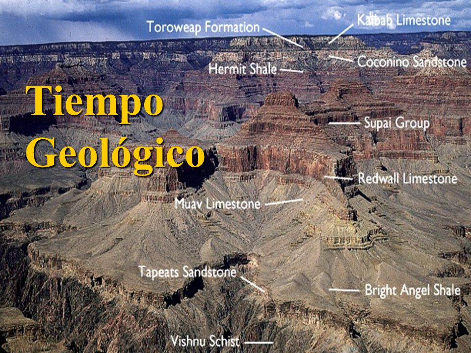 Tiempo Geológico iempo
