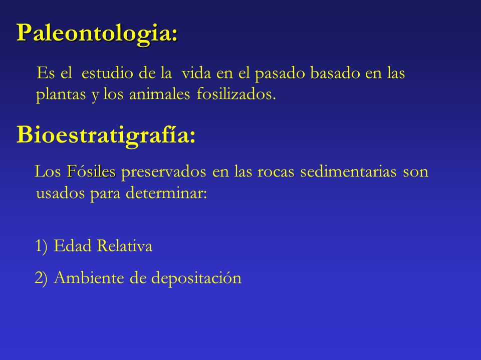 Paleontologia: Bioestratigrafía: