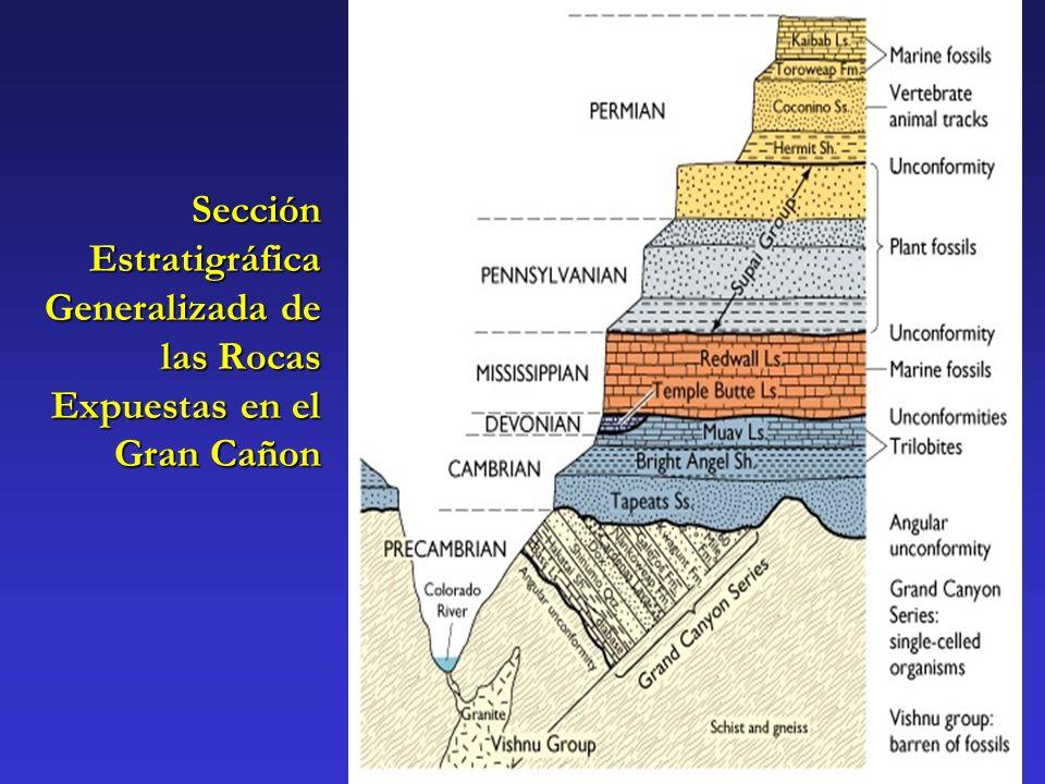Sección Estratigráfica Generalizada de las Rocas Expuestas en el Gran Cañon