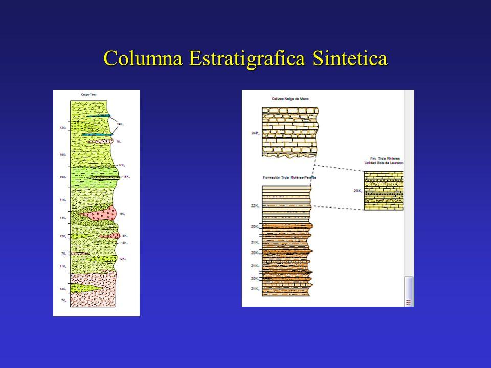 Columna Estratigrafica Sintetica