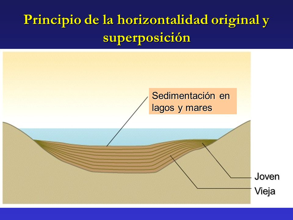 Principio de la horizontalidad original y superposición