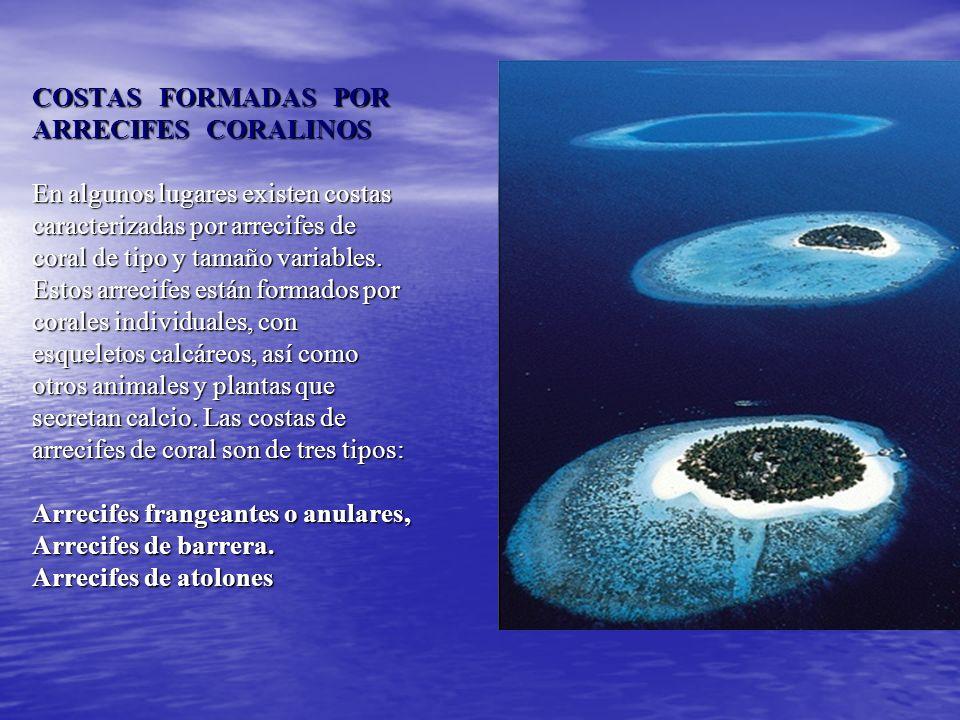 COSTAS FORMADAS POR ARRECIFES CORALINOS
