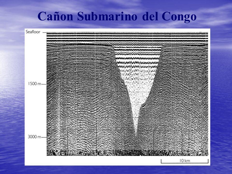 Cañon Submarino del Congo
