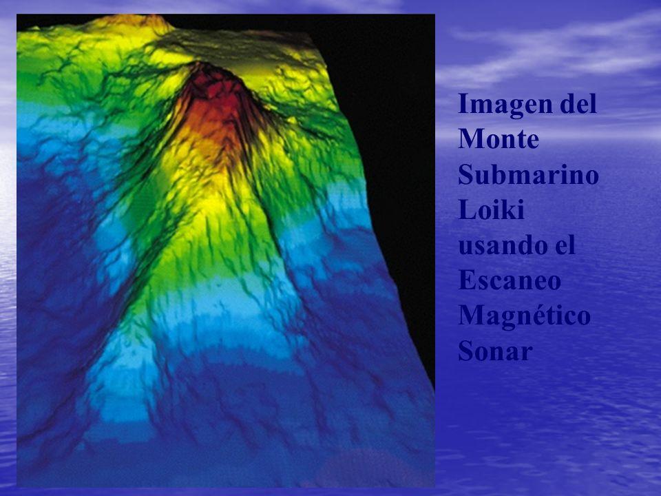 Imagen del Monte Submarino Loiki