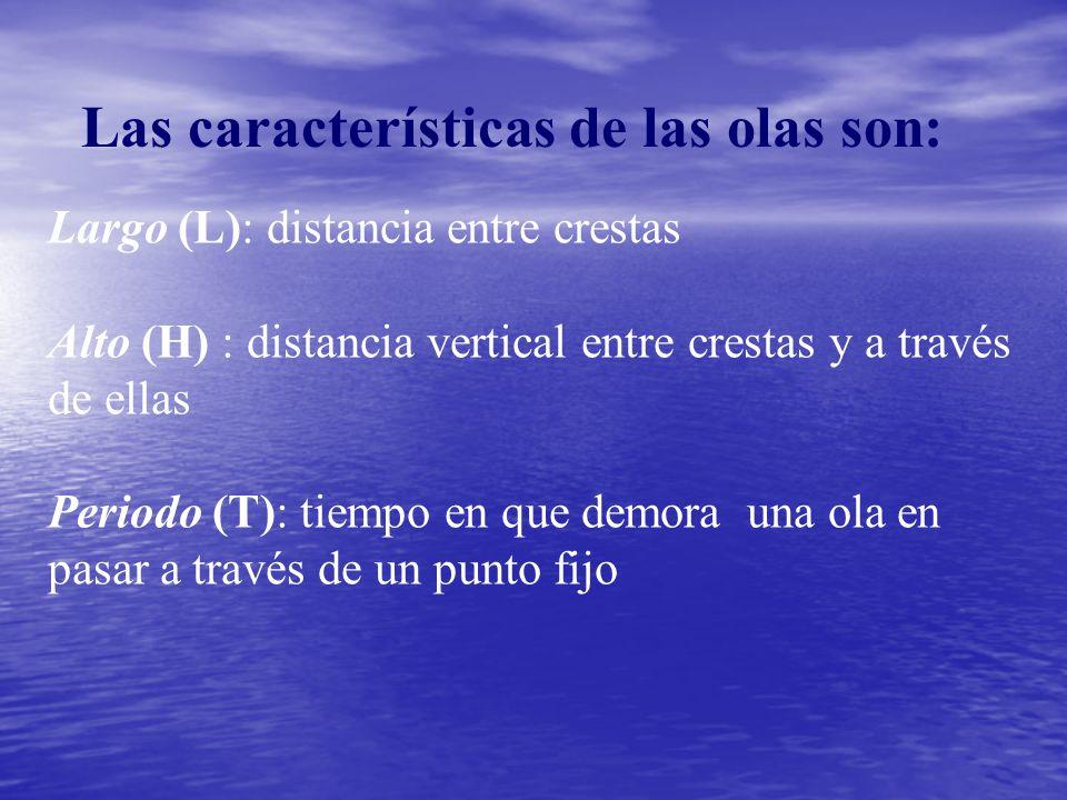 Las características de las olas son: