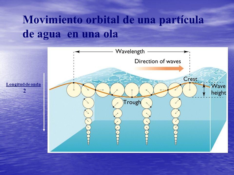 Movimiento orbital de una partícula de agua en una ola