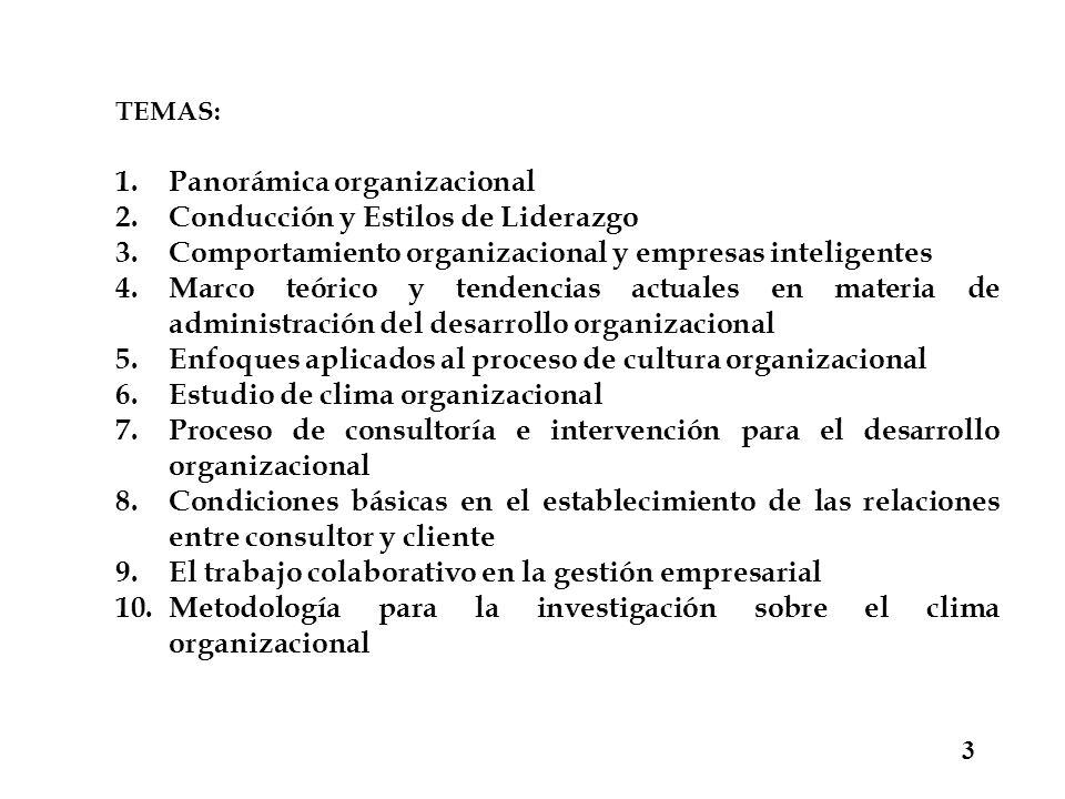 Panorámica organizacional Conducción y Estilos de Liderazgo