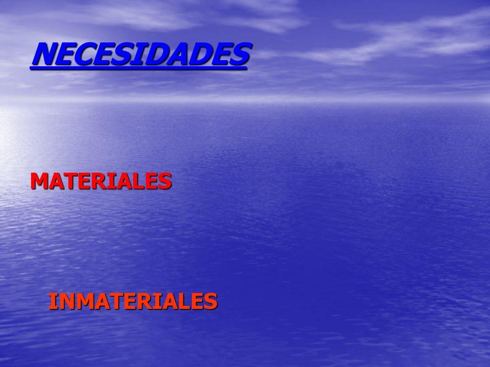 NECESIDADES MATERIALES INMATERIALES
