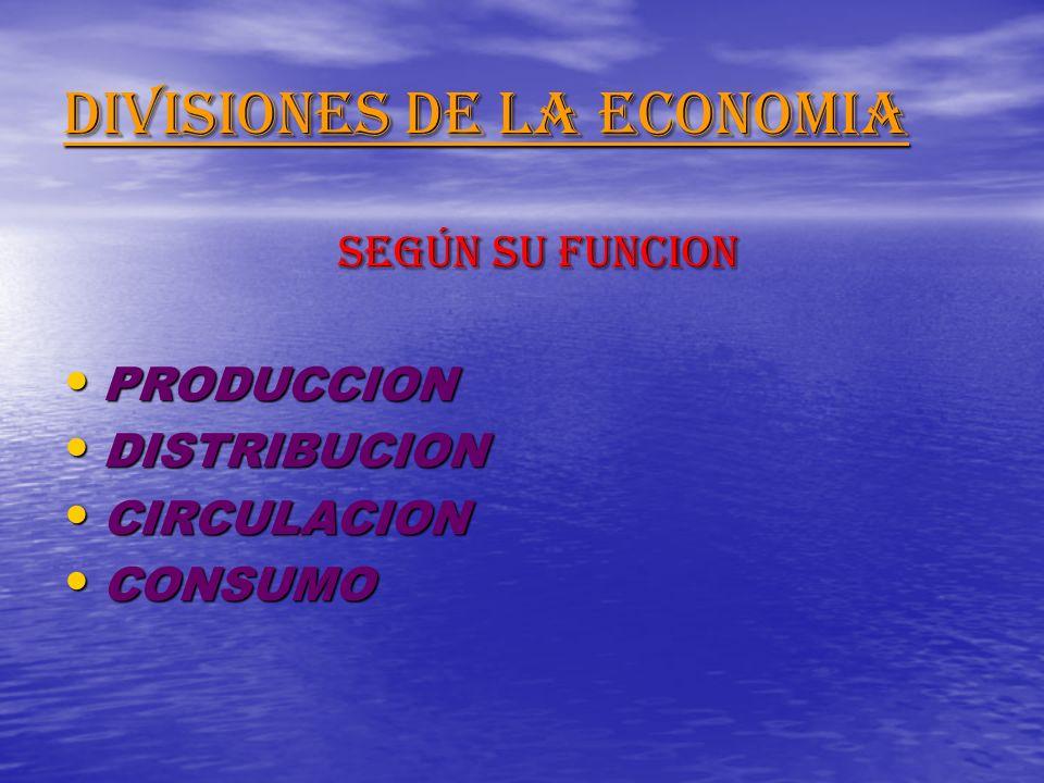 DIVISIONES DE LA ECONOMIA