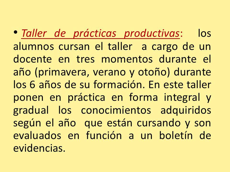 Taller de prácticas productivas: los alumnos cursan el taller a cargo de un docente en tres momentos durante el año (primavera, verano y otoño) durante los 6 años de su formación.