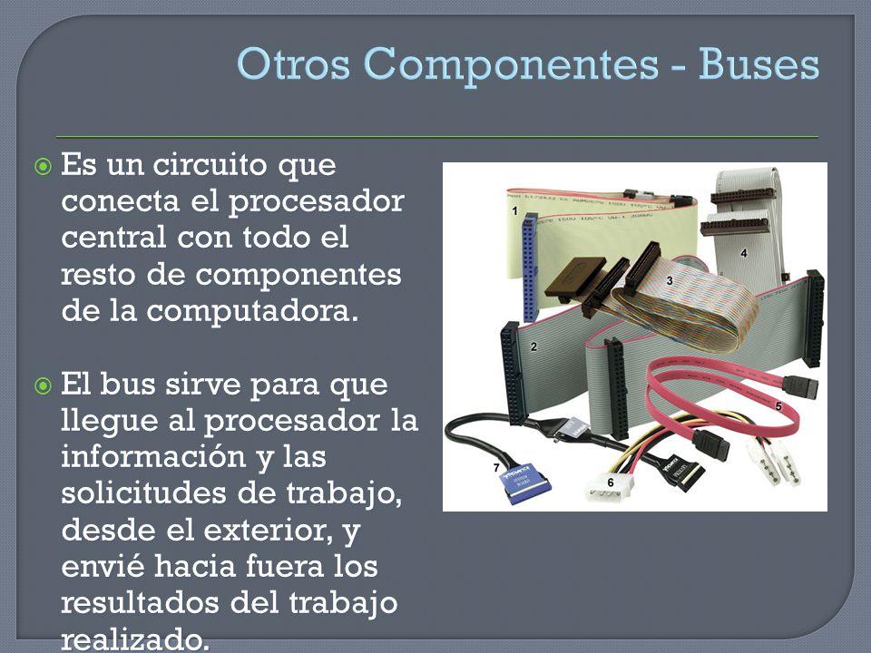 Otros Componentes - Buses