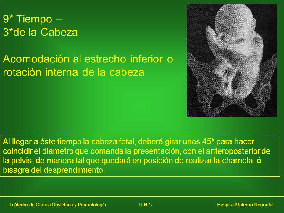 Acomodación al estrecho inferior o rotación interna de la cabeza