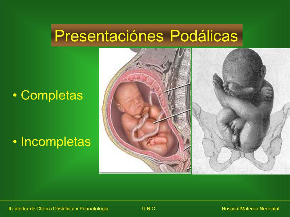 Presentaciónes Podálicas