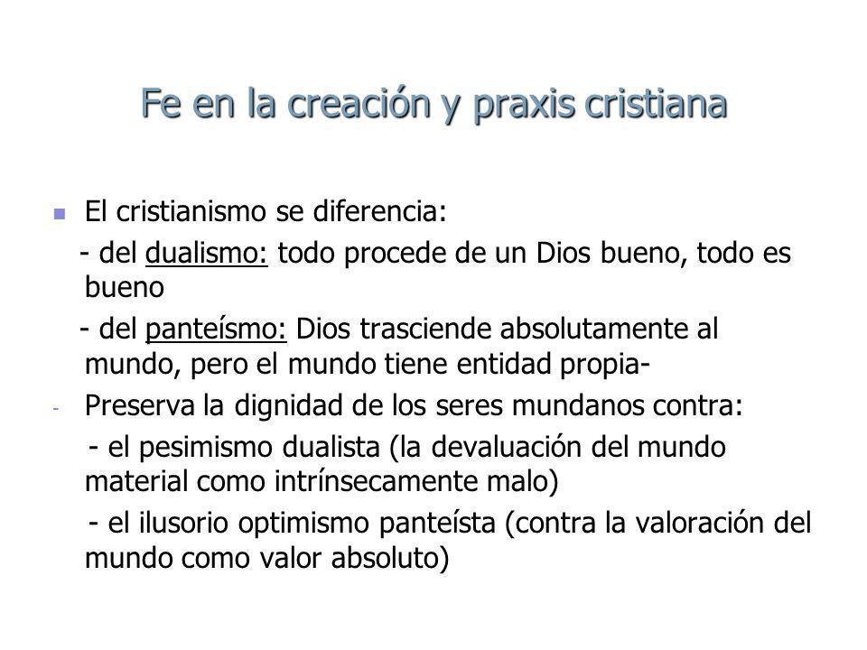 Fe en la creación y praxis cristiana