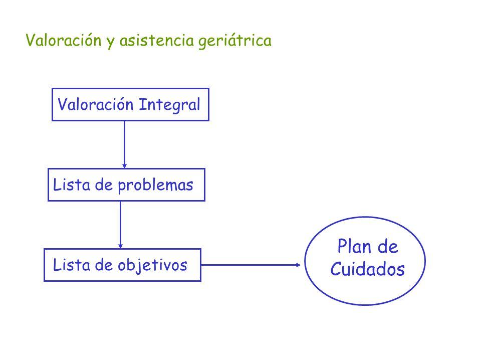 Plan de Cuidados Valoración y asistencia geriátrica