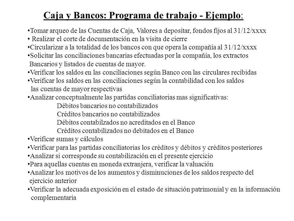 Caja y Bancos: Programa de trabajo - Ejemplo: