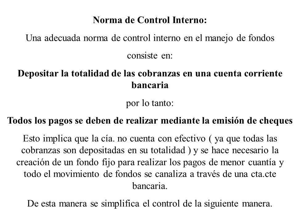 Norma de Control Interno:
