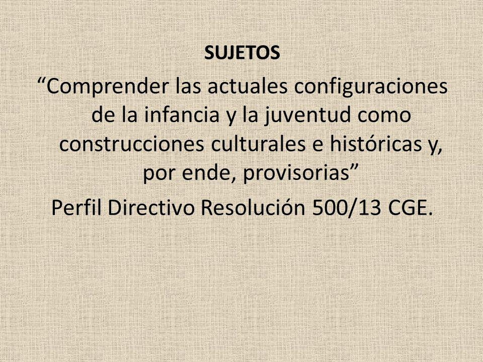 Perfil Directivo Resolución 500/13 CGE.