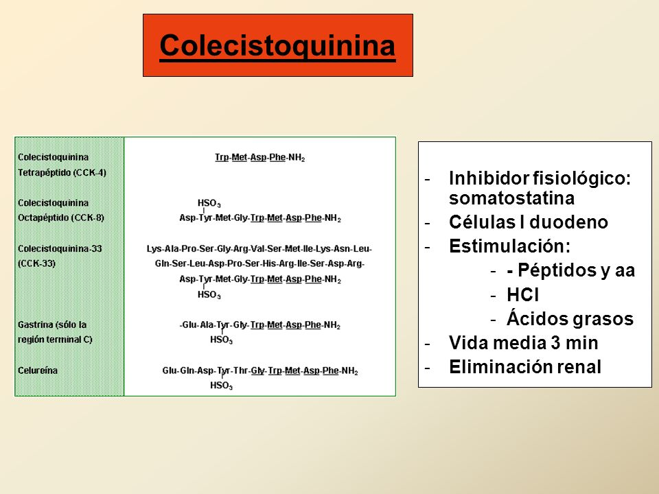 Colecistoquinina Inhibidor fisiológico: somatostatina