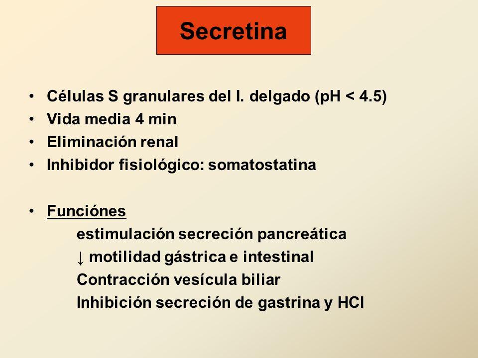Secretina Células S granulares del I. delgado (pH < 4.5)