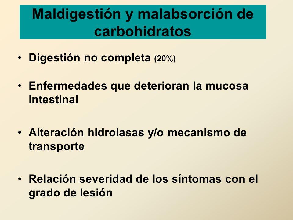 Maldigestión y malabsorción de carbohidratos