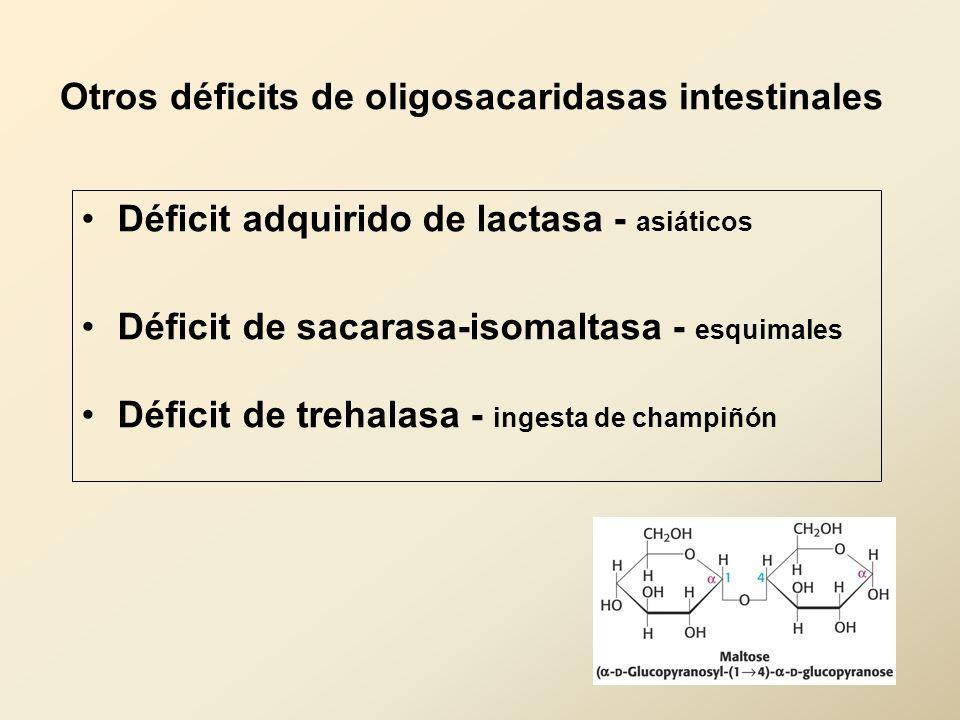 Otros déficits de oligosacaridasas intestinales