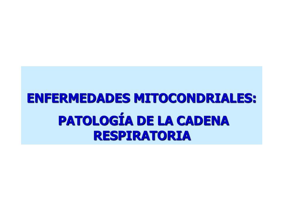 ENFERMEDADES MITOCONDRIALES: PATOLOGÍA DE LA CADENA RESPIRATORIA