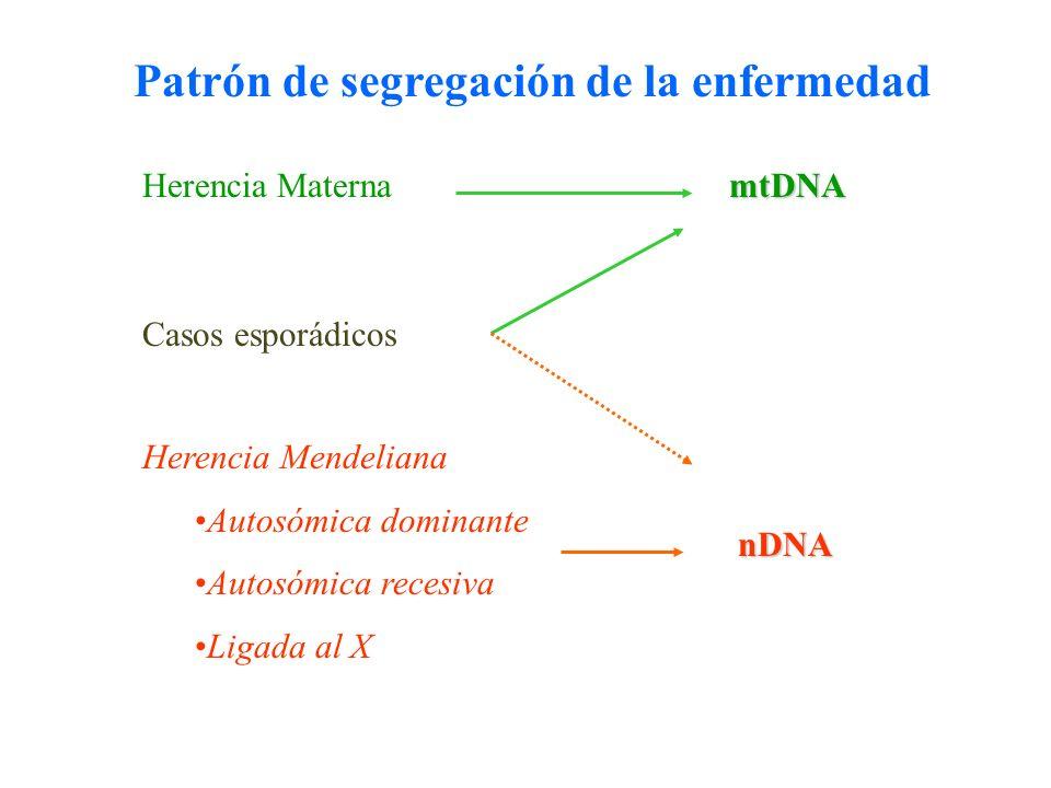 Patrón de segregación de la enfermedad