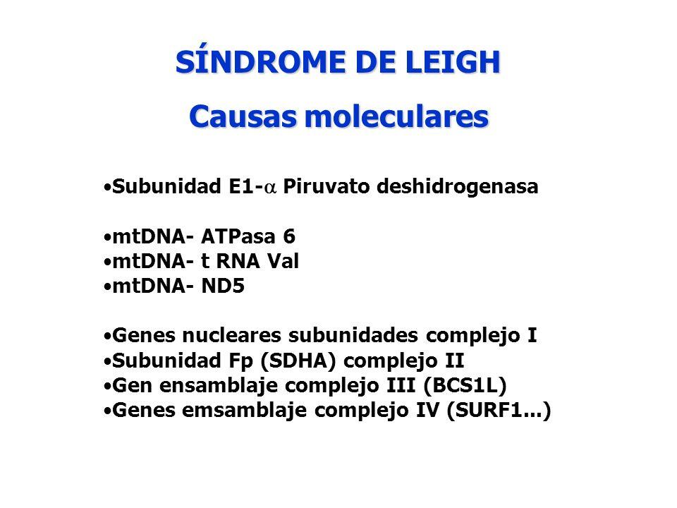 SÍNDROME DE LEIGH Causas moleculares