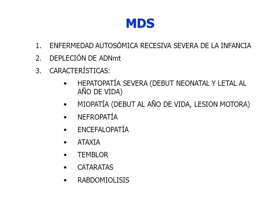 MDS ENFERMEDAD AUTOSÓMICA RECESIVA SEVERA DE LA INFANCIA